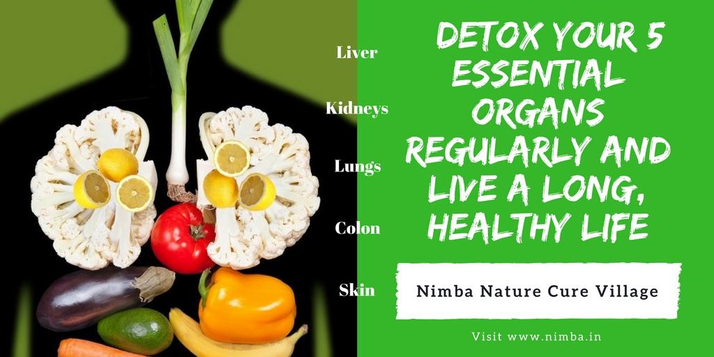 Detox your body organs