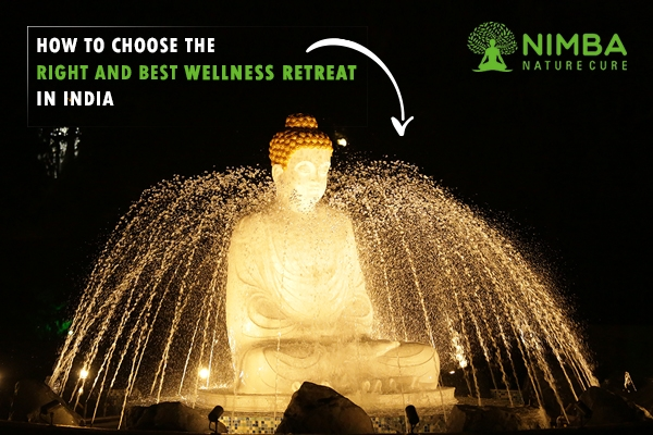 wellness retreat in india